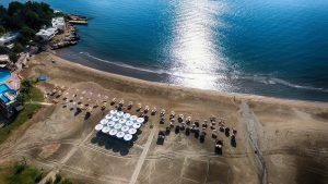 Liparis mavi bayraklı deniz