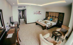 Liparis family suite